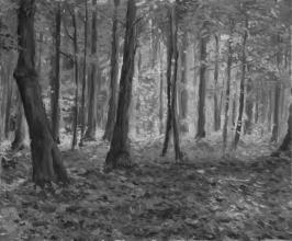 <strong>Ráno v lese</strong> Obraz jsem maloval v letních ránech, kdy byla na tomto místě opravdu magická atmosféra a výjev dosloval přetékal barvami. Technika: olej na plátně. Rozměr: 60 x 50 cm. Obraz je prodán